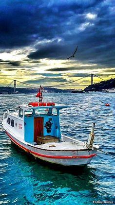 #istanbul #türkiye #turkey #sea #seagull