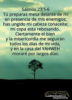 LaBibliaDice: Salmo 23 (5)