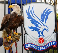 Palace v Tottenham All Things Crystal, Crystal Palace Fc, South London, Great Team, Eagles, Bald Eagle, Childhood Memories, Red And Blue, Pride