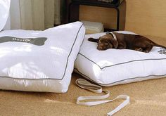 Heavenly Dog Bed from Westin Store