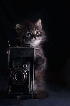 фото-ГРАФ by Yuriy Korotun