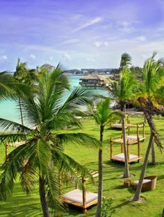 Explore the Dominican Republic.