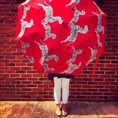 Scalamandre Zebra Umbrella
