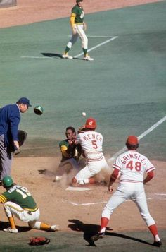 1972 World Series Action - Johnny Bench - The Greatest Catcher in History Baseball Boys, Baseball Photos, Baseball Teams, Baseball Cards, Baseball Stuff, Pirates Baseball, Softball Stuff, Basketball Uniforms, Baseball Players