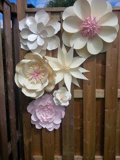 forme fiori giganti