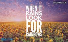 #lookforrainbows # Instagram @martinhosner #followme