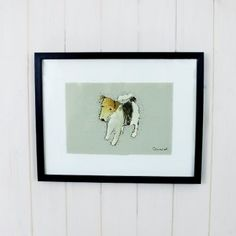 Harry The Jack Russell Picture