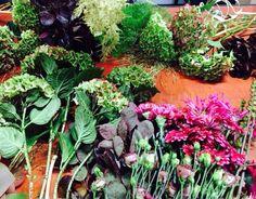 Galeria kvetin kvetinova skola