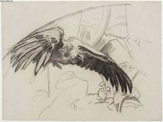 John Singer Sargent's Sketch for Gog and Magog - Vulture with Capital - Boston Public Library Murals