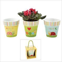 Happi by Dena Flower Pot in Gift Box (Set of 3 Asst)