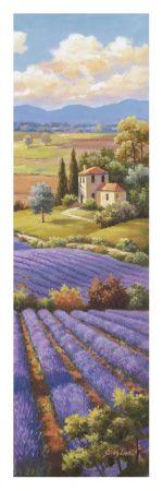 Fields of Lavender I Lámina por Sung Kim en AllPosters.es