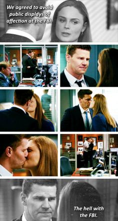 I Love the television series BONES !  my favorit couple; Angela & Hodgins + Brennan & Booth