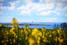 Helnæs Fyr  #tv2vejret #fyn #nature #visitdenmark #naturelovers #natur #denmark #danmark #dänemark #landscape #nofilter #assens #mitassens #opdagdanmark #fynerfin #assensnatur #vielskernaturen #visitassens #instapic #sonnenschein #picoftheday #may #forår #yellow