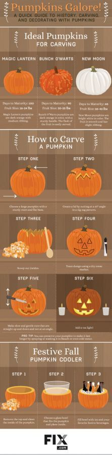 We have pumpkin carving tips just for you! #Repost