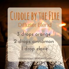 """""""Cuddle by the Fire"""" Christmas diffuser blend of orange, cinnamon, and clove"""