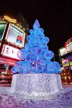 10 best blue christmas lights images christmas time christmas rh pinterest com