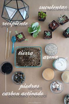 DIY succulent terrarium supplies | Materiales para hacer tu propio terrario de suculentas | casahaus.net
