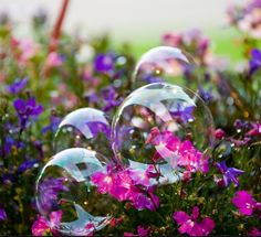 Prop bubbles :) Pretty colors! Big brother blows bubbles for littles during shoot
