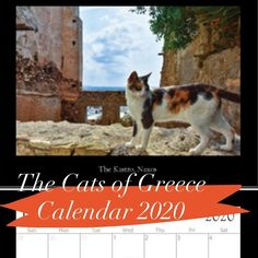 Most current Images 2020 calendar handmade Tips The actual tailor made schedules are made to supply your enterprise ways to advertise your business Cat Calendar, Photo Calendar, Calendar Ideas, Wildlife Photography, Travel Photography, Knit In The Round, Goods And Services, Santorini, Athens