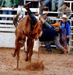 Brody Smith falls off his horse during the at the 67th Annual Cal Farley's Boys Ranch Rodeo.