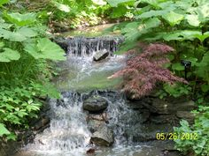 Powell Gardens Powell Gardens, Waterfall, Spaces, Photography, Outdoor, Outdoors, Photograph, Fotografie, Waterfalls