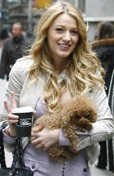 Gossip Girl's Blake Lively always seems to have her dog -- a #maltipoo named Penny -- on the set! cutest dog ever