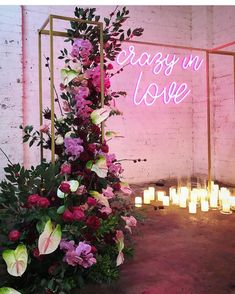 Lights are used throughout wedding reception and ceremony spaces to make them more welcoming and inviting and to create a cozy ambience. You can also make a cool wedding backdrop, arch or altar with lights. Wedding Ceremony Ideas, Marie's Wedding, Wedding Goals, Wedding Themes, Wedding Signs, Perfect Wedding, Wedding Flowers, Wedding Planning, Dream Wedding