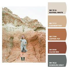 Super Ideas Exterior Paint Colora For House Tan Neutral Room Paint Colors, Paint Colors For Home, Exterior Paint Colors For House, Exterior Colors, Sherwin William Paint, Paint Swatches, Colour Schemes, Paint Schemes, Color Palettes