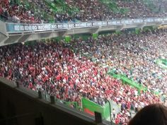 Jogo Sporting-Benfica-31 de agosto de 2013