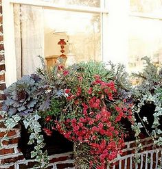 A few beautiful fall planting ideas for window boxes.