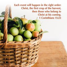 There is an order to the harvest and we will follow Him. #Harvest #Abundance #VerseOfTheDay #HelpingYouLiveWell