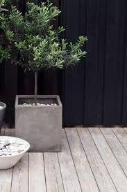 Image result for big grey pots