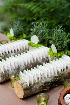 Love this.  Escort cards & birch log.  I think I would have sliced the bottom a little to make sure they stayed flat.