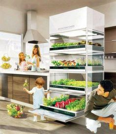 What I would like my kitchen cupboards to hold! Raw ingredients for a healthy lifestyle! Kitchen Nano Garden