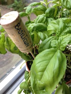 How to make your own plantlabels, great idea for a vegetable garden.