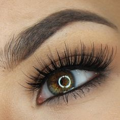Seriously can not get enough of these lashes