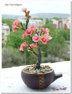 Bonsai sakura of polymer clay. Cold Porcelain Flowers, Ceramic Flowers, Clay Flowers, Flower Pots, Mini Bonsai, Plantas Bonsai, Nylon Flowers, Pot Plante, Unique Trees