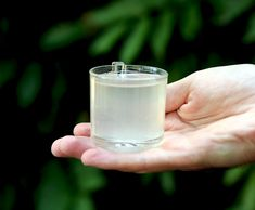 студенопресовано и сурово кокосово масло Glass Of Milk, Drinks, Food, Drinking, Beverages, Meal, Essen, Drink, Hoods