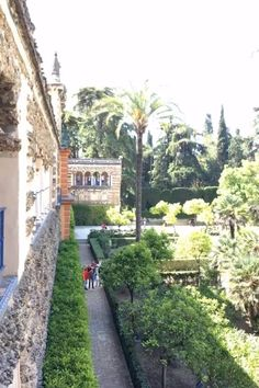 Alcazar Seville, Madrid Travel, Cruise Europe, Spanish Culture, Seville Spain, Southern Europe, Unusual Things, Travel Videos, Andalusia