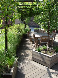 roof  top  garden, modular  decking, planters,  arbor,  drip  irrigation,  low  voltage  lighting, wisteria , birch,   roses, grasses