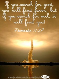 If you search for good, you will find favor, but if you search for evil, it will find you.  Proverbs 11:17...More at http://beliefpics.christianpost.com/  #bible #God