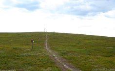 Mountain biking (2) | Saariselkä, Kona Shop Saariselkä: Rent or buy a bike and excursions from www.saariselka.com/kona.shop #mtb #mountainbiking #maastopyoraily #maastopyöräily #saariselkämtb #saariselkä #saariselka #saariselankeskusvaraamo #saariselkabooking #astueramaahan #stepintothewilderness #lapland
