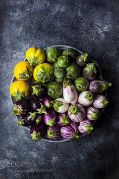 Eggplant Palette by saraghedina