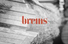 Brems - Opening Minds - Davy Dooms - Welcome to my portfolio