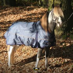 The most important role of equestrian clothing is for security Although horses can be trained they can be unforeseeable when provoked. Riders are susceptible while riding and handling horses, espec… Western Riding, Trail Riding, Riding Hats, Horse Riding, Equestrian Outfits, Equestrian Style, Becoming A Veterinarian, Horse Supplies, Riding Lessons