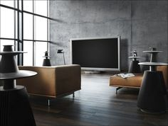 Bang and Olufsen TV and speakers.  I would not consider anyone else for my audio/video needs than B & O, they are unparalleled.  The TV?  103 inch plasma.  The price? if you have to ask, you can't afford it.