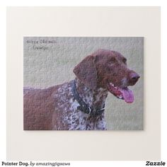 Pointer Dog. Jigsaw Puzzle