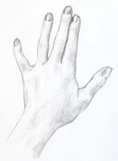 Drawing Tutorial: A Simple Drawing of Your Hand « Portrait Artist from Westchester, NY – Anne Bobroff-Hajal