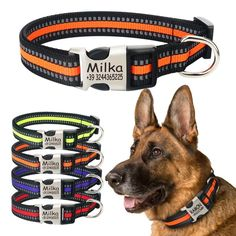 Dog Collar Reflective Nylon Personalised Engraved Dog Collar Custom Pet Collars ID Tag For For Small Medium Large Dog Custom Dog Collars, Personalized Dog Collars, Dog Collars & Leashes, Dog Leash, Dog Training Methods, Dog Training Techniques, Training Your Puppy, Training Dogs, Nylons