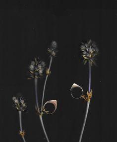 Botanical Stirrup